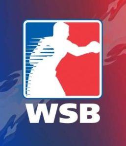 Serie Mundial de Boxeo